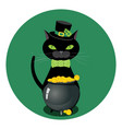 black cat with shamrock vector image
