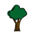 cartoon tree natural forest foliage ecology icon vector image vector image