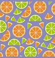 citrus fruits sliceds pattern background vector image