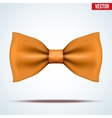 Realistic orange bow tie vector image