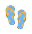 pair of flip flops vector image