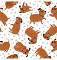 puppy seamless pattern with paws footprints vector image