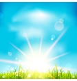Beautiful summer day vector image vector image