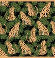 cheetah seamless pattern vector image vector image