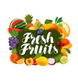 fresh fruits natural food greengrocery concept vector image vector image