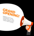 grand opening flyer banner template marketing vector image vector image