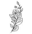 hand drawn modern flowers drawing and sketch vector image vector image
