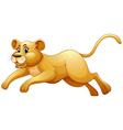 Little cub running alone vector image vector image
