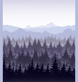 pine forest in fog on vector image vector image