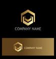 shape polygon gold technology logo vector image
