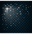 Shine star sparkle icon 3 vector image vector image