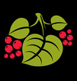 Three simple green tree leaves with red seeds vector image vector image