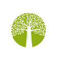 tree logo environment ecology nature vector image
