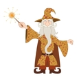Wizard casting spell with magic wand vector image