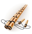 Ethnic bamboo flute vector image
