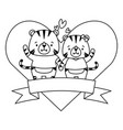 cute couple tiger animals heart love ribbon vector image vector image
