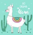 cute funny llama or alpaca poster t-shirt vector image