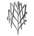 date palm leaf vintage vector image vector image