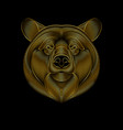 engraving stylized golden bear on black vector image vector image