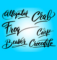 frog and carp hand written typography vector image