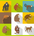 jungle monkey icon set flat style vector image vector image