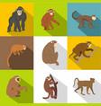 jungle monkey icon set flat style vector image