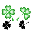 Leaf clover on white background vector image