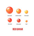 realistic detailed 3d red caviar banner concept ad vector image vector image
