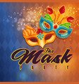 the mask party mask orange background image vector image