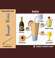 bellini cocktail infographic set recipe vector image vector image