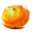 drawing orange vector image vector image