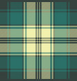 green classic plaid seamless pattern vector image