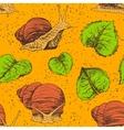 hand drawn set snails vector image