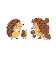 Hedgehogs vector image