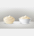 mayonnaise sour cream vector image vector image