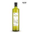 premium quality olive oil glass bottle vector image