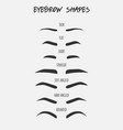 set of different types of female eyebrows with vector image