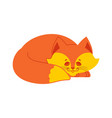 sleeping fox isolated asleep wild beast on white vector image