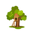 treehouse wooden hut on tree with ladder for kids vector image