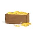 wooden treasure chest vector image