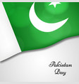 elements of pakistan day vector image