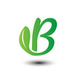 b green leaves letter ecology logo vector image