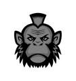 chimpanzee wearing mohawk mascot vector image