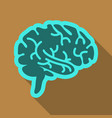 drawing of a human brain human medicine icons vector image
