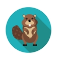 flat icons beaver vector image vector image