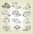 graphic sketch of different cheeses icons vector image vector image