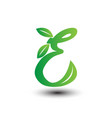 e green leaves letter ecology logo vector image vector image