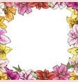 frame of flowers beautiful frame of colorful vector image