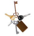 key collection with fob vector image vector image