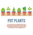 Pot Plants In Long Wooden Pot vector image